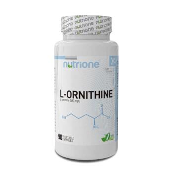 L-Ornitina promueve el flujo sanguíneo, oxigeno y nutrientes.