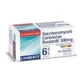 SACCHAROMYCES CEREVISIAE BOULARDII - LAMBERTS