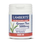 TÉ VERDE - LAMBERTS - Gran poder antioxidante