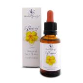 Flores de Bach 5 Flores - Healing Herbs - Bienestar emocional