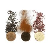 Gourmet Almond Protein Cookies - Amix - Galleta proteica