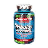 TRIBULUS TERRESTRIS 500 mg - AMINOSTAR