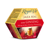 JALEA REAL ROYAL VIT CON GINSENG 20 x 10ml - DIETISA