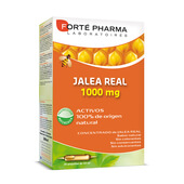 JALEA REAL 1000mg 20 x 10ml - FORTE PHARMA