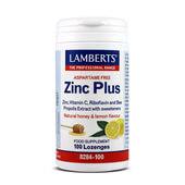 ZINC PLUS 100 Tabs - LAMBERTS