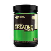 MICRONIZED CREATINE POWDER 317 g - OPTIMUM NUTRITION