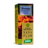 SANA FLOR HARPAGO 70 Tabs - SANTIVERI
