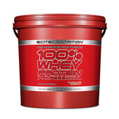 WHEY PROTEIN PROFESSIONAL 5 Kg - SCITEC NUTRITION