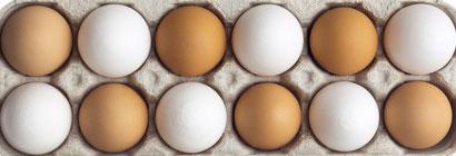 ¿Huevo blanco o huevo moreno?
